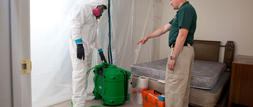 Woodbridge, VA mold removal process